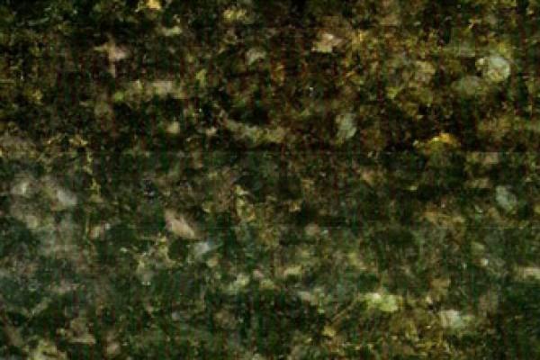 1gallery_2806E536CD-AFEA-0E44-CA9E-EAA62829CA0C.jpg